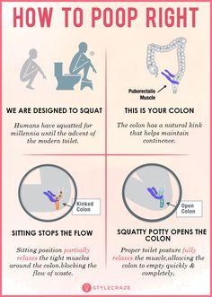 Festive Poo Chart Health Medicine Anatomy Hospitals