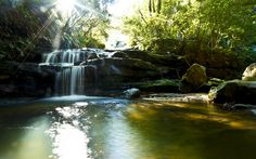 Todays Adventure - Leura Cascades  by Nina Matthews Photography, via Flickr