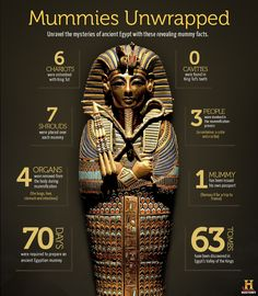 Mummies are full of ancient mystery and information. This infographic provides fun facts about mummies.