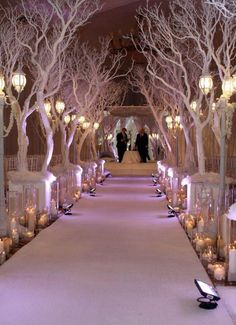I'd love to have the aisle lined with trees (not necessarily white) or flower arches... probably not going to happen though :-/