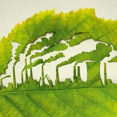 Cut Leaf Illustrations for Plant for the Planet