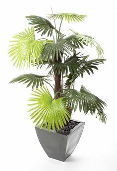 Artificial 4ft Windmill Fan Palm Tree (P052W) from Artplants.co.uk #palm #palmtree #artificialtree #artificialplant #houseplant