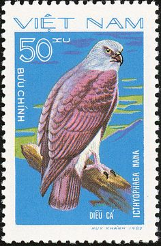 Lesser Fish Eagle stamps - mainly images - gallery format