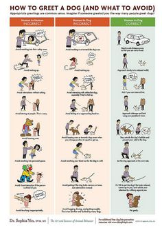 Dog training. Poster art for DOG BITE PREVENTION WEEK (www.drsophiayin.com) by lili.chin, via Flickr.