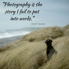 Photography Quotes to Kickstart Your Inspiration
