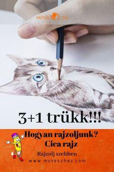 Cica rajz 3+1 extra trükk, megmutatjuk, katt ide: Dogs, Pet Dogs, Doggies