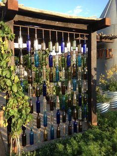 Wine bottle curtain wall -- Plan your Wine Country Wedding in Temecula — Pinterest style at Peltzer Farms unique and rustic vintage setting | Temecula Grapevine