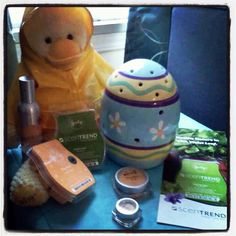 Wellington is so cute my scentsy obsession pinterest scentsy negle Image collections