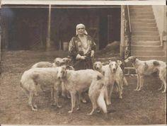 Regina Maria Russian Wolfhound, Irish Wolfhound, Photos With Dog, Vintage Photo Booths, Bassett Hound, Lurcher, Vintage Dog, Dog Photography, Mans Best Friend