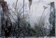 Sebastiaan Bremer, Roots and Branches, 2010, inks on Lamda Print