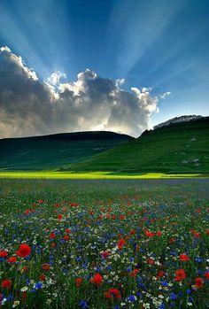 """""""E il sol nel radiante azzurro immenso Fin de gli Abruzzi al biancheggiar lontano Folgora, e con desio d'amor più intenso Ride a' monti de l'Umbria e al verde piano"""" (Giosuè Carducci)"""
