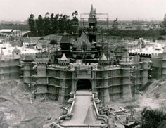 50 Years of Disney Theme Parks      More than fifty years ago, Sleeping Beauty's Castle came to life. Disneyland in Anaheim, Calif., became the world's first theme park -- 160 acres of carnival rides, midway games and live performances based on Disney entertainment.  (Walt Disney Co.)  Opened in 1955