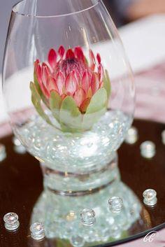 Venus protea in simple tulip style vase Colorful Centerpieces, Table Centerpieces, Table Decorations, Wedding Mood Board, Wedding Table, Wedding Ideas, Wedding Fun, Wedding Things, Protea Flower