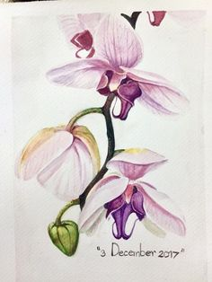 """Orchid ""watercolor"