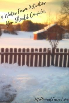 Need some ideas for what to do this winter on your farm or homestead?  Try out these four winter farm activities!
