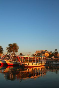 'Morning on the Nile, Luxor, Egypt' (2012) photographed by travelliptico. via 500px