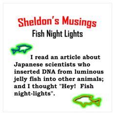 Sheldon's brilliant fish light idea