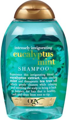 best conditioner for dry scalp and thin oily hair