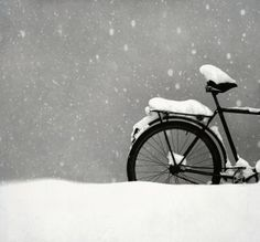 I love snow, even on a bicycle! I Love Snow, I Love Winter, Winter Snow, Winter Christmas, Winter White, Spring Snow, Winter Park, Winter Fun, Christmas Tree