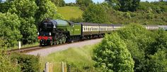 Hop aboard the dog friendly Bodmin & Wenford Railway and take in the scenery in true, style. Places In Cornwall, Days Out, Dog Owners, Dog Friends, Activities For Kids, Trains, Scenery, England, 1950s Style