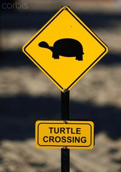 """Yellow warning sign """"turtle crossing"""", turtles crossing the beach for laying their eggs, Manavgat, Turkey"""