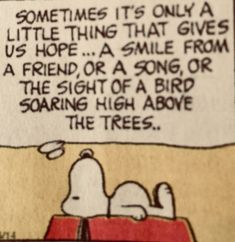 Very true specially when so much has change, recognizable sounds faces, words make a world of difference Peanuts Cartoon, Peanuts Snoopy, Peanuts Comics, Peanuts Quotes, Snoopy Quotes, Snoopy Love, Snoopy And Woodstock, Sign Quotes, Funny Quotes