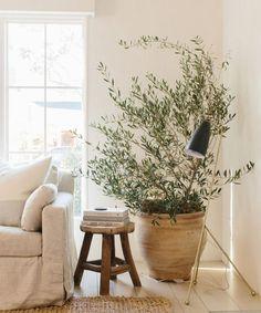 Our CEO Julia Hunter's Venice Home is a Minimalist Dream – Rip & Tan - farmhouse living room furniture Natural Interior, Home Interior, Interior Design, Interior Colors, Interior Livingroom, Design Interiors, Interior Paint, Home Living Room, Living Room Decor