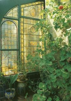 Detalle de ventana y verde.