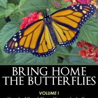 8 Great Gardening Tips for Attracting More Monarchs to your Butterfly Garden...and Keeping Them There!