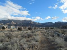 4 lots for sale together in New Mexico