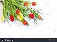 Стоковая фотография «Bouquet Red Yellow Tulips On White» (редактировать), 1604346025 Yellow Tulips, Bouquet, Plants, Photography, Image, Design, Photograph, Bouquet Of Flowers, Fotografie