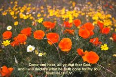 Come and hear, all ye that fear God, and I will declare what he hath done for my soul. Psalm 66:16