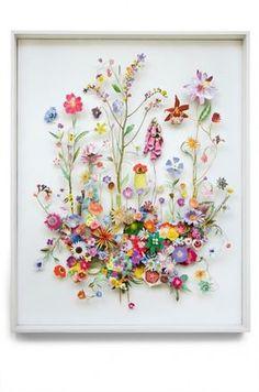 Anne Ten Donkelaar hält immer nach dem ganz Besonderen in der Natur Ausschau. Besonders Wiesenblumen haben es ihr angetan.