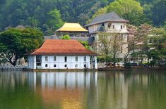 The temple of the sacred tooth, Kandy Sri Lanka and get there by steam mountain train.