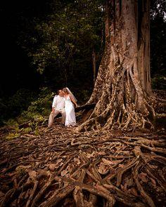 Wedding couple with Banyan Tree