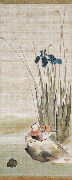 Iris and Mandarin Ducks. By Sakai Hōitsu. Japanese hanging scroll. Edo period. Dallas Museum of Art.