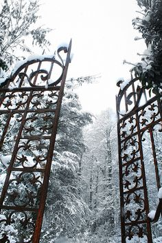Narnia in winter? Triquetra, Chronicles Of Narnia, Iron Gates, Winter Beauty, Snow Queen, Ice Queen, Garden Gates, Winter Garden, Winter Time