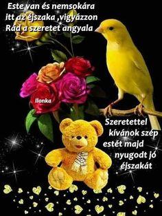 Teddy Bear, Birds, Teddybear