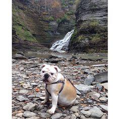kissingwrinkles:  Stella at Lucifer Falls
