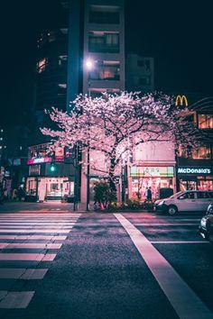 Chuo - Tokyo, Japan By ungatonipon Aesthetic Japan, Japanese Aesthetic, City Aesthetic, Aesthetic Photo, Aesthetic Pictures, Photography Aesthetic, Korea Wallpaper, Scenery Wallpaper, Couple Wallpaper