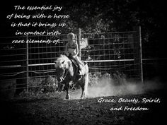 Horse Quotes And Sayings For Girls. QuotesGram