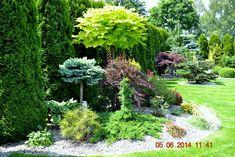 Fertilizer For Organic Gardening Code: 2765178162 Front Yard Garden Design, Front House Landscaping, Landscaping Plants, Backyard Garden Design, Small Gardens, Outdoor Gardens, Small Garden Landscape, Evergreen Garden, Home Vegetable Garden