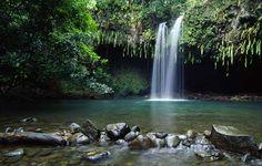 I'd like us to vacation in Maui and visit the Hana Waterfalls. I love Hawaii.