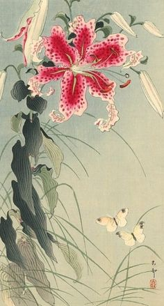 Original Japanese woodblock print by Ohara Koson (Shoson), circa of two butterflies and a large pink lilly, by 7 in beautiful condition. Catalog (Crows, Cranes, and Camellias: The Natural World of Ohara Koson. Japanese Drawing, Japanese Painting, Chinese Painting, Chinese Art, Art And Illustration, Botanical Illustration, Botanical Art, Ohara Koson, Sculpture Textile