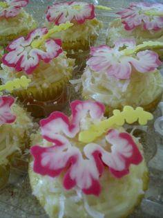 Aloha Cupcakes with White Chocolate Hibiscus Flowers