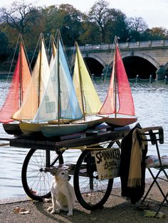 Toy boats for rent in the Jardin du Luxembourg, Paris. The wit, whimsy and wonder that are Paris. And the little well-behaved dog of course.