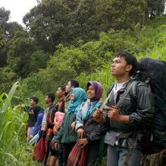 ekspedisi Panderman
