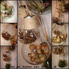 Noisettes et pommes de pin dans des ampoules pour Noël, super idée chez camedonneuneidee justement !