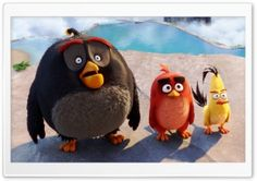 Bomb, Red, Chuck - Angry Birds HD Wide Wallpaper for Widescreen