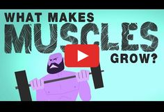 See What Makes Muscles Grow (and Shrink)